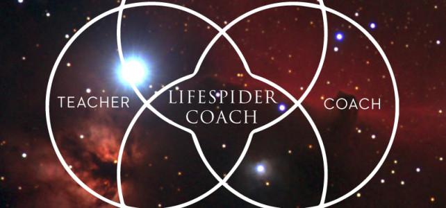 Lifespider_blomman